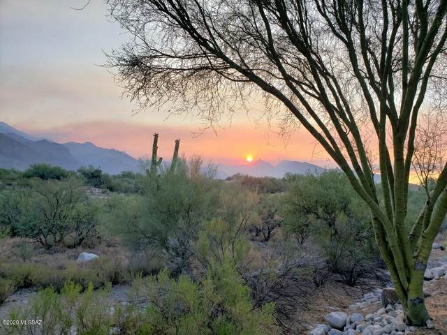 5800 N Kolb Road #5125, Tucson, AZ 85750 (#22026996) :: Gateway Partners