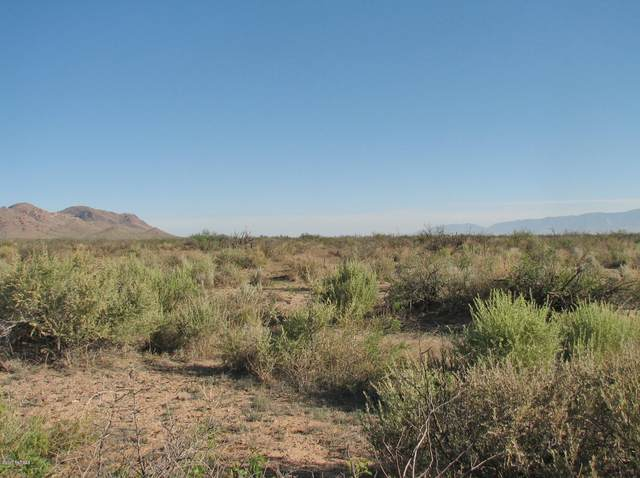 563.4 Acre W Marguerite Road, Willcox, AZ 85643 (#22027049) :: Gateway Partners