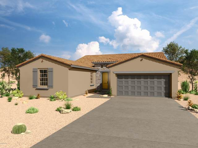 10106 N Indian Jewel Drive, Marana, AZ 85742 (#22027090) :: Kino Abrams brokered by Tierra Antigua Realty