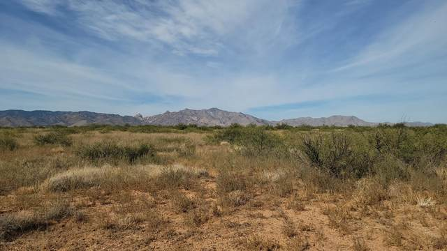1 Acre E Treasure Road #20, Pearce, AZ 85625 (#22027096) :: Gateway Partners