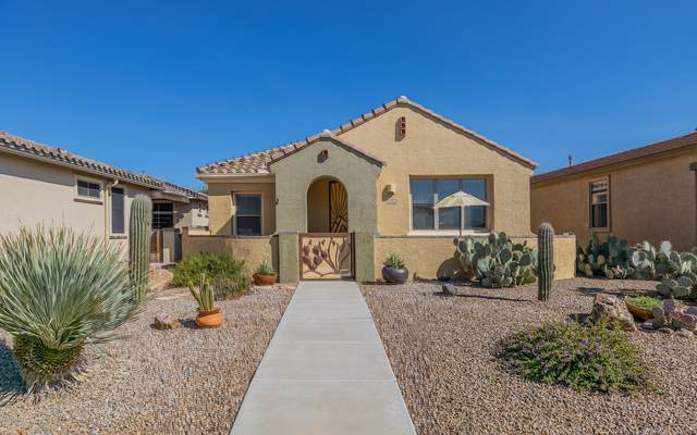 10110 S Azure Surrey Drive, Vail, AZ 85641 (#22027165) :: Kino Abrams brokered by Tierra Antigua Realty