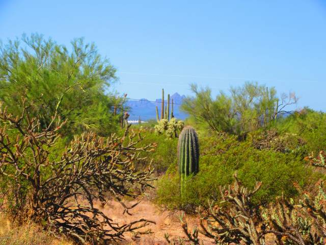 S Twin Hawk Trail 5 Acres, Marana, AZ 85658 (#22027251) :: Tucson Real Estate Group