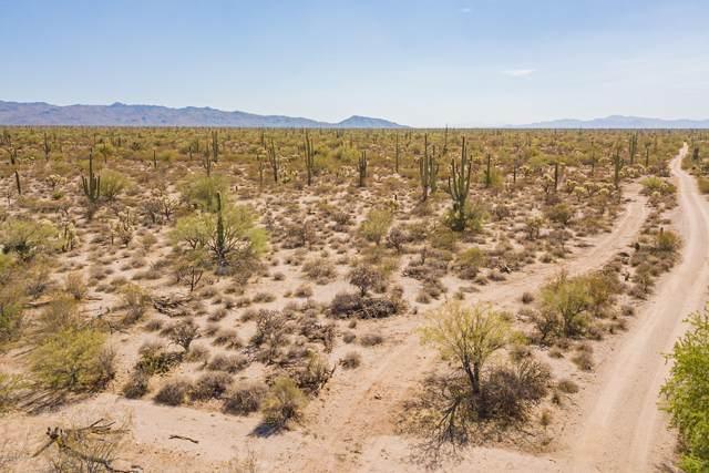 35900 E Amber Sunrise Drive, Marana, AZ 85658 (#22027426) :: Kino Abrams brokered by Tierra Antigua Realty