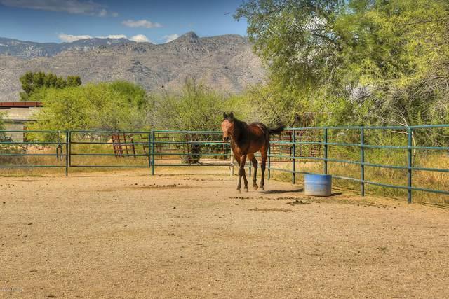 10519 E Tanque Verde Road, Tucson, AZ 85749 (#22027442) :: Tucson Real Estate Group