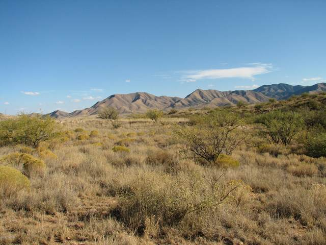 4.33 Acres E Sacred Rock Road, Dragoon, AZ 85609 (MLS #22027832) :: My Home Group