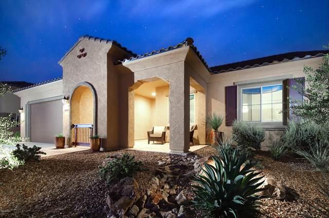 13918 N Rim Trail, Marana, AZ 85658 (#22027942) :: Long Realty Company