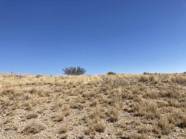 15730 S Empire Road, Benson, AZ 85602 (#22027974) :: Long Realty - The Vallee Gold Team