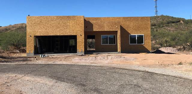 424 Feo Court, Rio Rico, AZ 85648 (#22028187) :: Long Realty Company