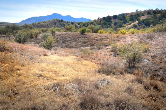 1 Tanglehead Lane #1, Patagonia, AZ 85624 (#22028203) :: The Local Real Estate Group | Realty Executives