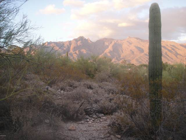 5330 N Camino Real Ptn 86, Tucson, AZ 85718 (#22028216) :: Tucson Property Executives