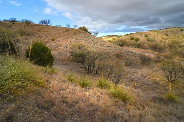 Lot 5 Tanglehead Lane ., Patagonia, AZ 85624 (#22028783) :: The Local Real Estate Group | Realty Executives