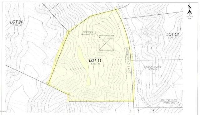 Lot 11 Tanglehead Lane ., Patagonia, AZ 85624 (#22028894) :: The Local Real Estate Group | Realty Executives