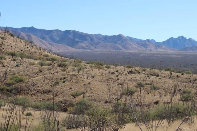 E Touchstone Trail, Benson, AZ 85602 (MLS #22028896) :: My Home Group