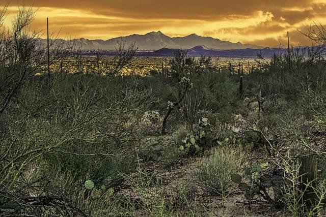 4427 W Cayton House Court #214, Marana, AZ 85658 (#22028957) :: Tucson Real Estate Group