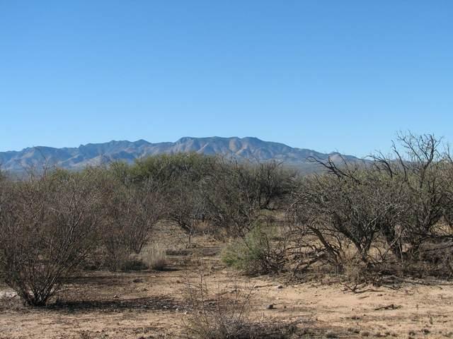 55 Acres N Her Way Way, St. David, AZ 85630 (MLS #22029022) :: My Home Group