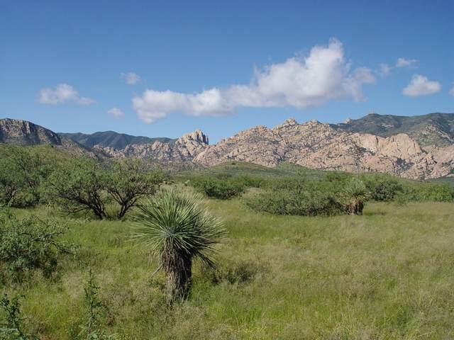 W Ironwood Road A, Cochise, AZ 85606 (#22029208) :: Long Realty Company