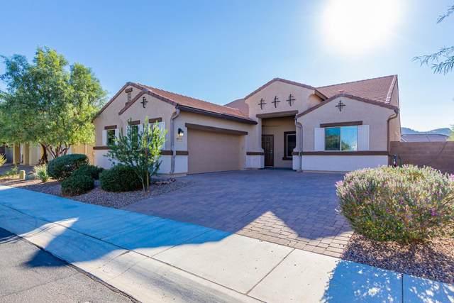 8803 W Saguaro Moon Road, Marana, AZ 85653 (#22029223) :: Tucson Property Executives