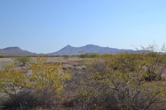 Lot 68 Calle Suprema #68, Douglas, AZ 85607 (#22029234) :: Long Realty Company