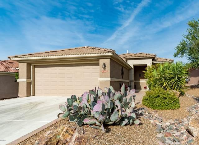 13667 N Gold Cholla Place, Marana, AZ 85658 (#22029315) :: Tucson Property Executives