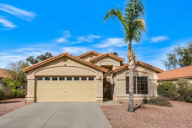 6968 W Avondale Place, Tucson, AZ 85743 (#22029332) :: Tucson Property Executives