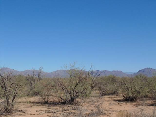 5110 S Sandario Road, Tucson, AZ 85735 (#22029472) :: The Josh Berkley Team