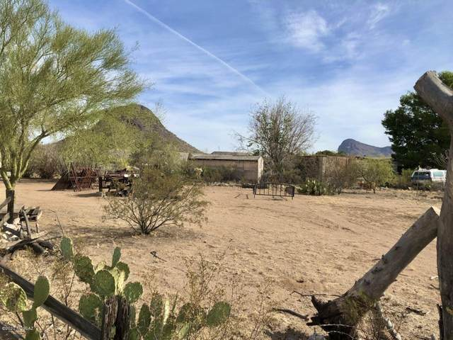 11380 W Monsoon Trail, Tucson, AZ 85743 (#22029539) :: Long Realty - The Vallee Gold Team