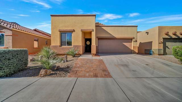 8573 N Western Juniper Terrace, Marana, AZ 85743 (#22029588) :: Long Realty - The Vallee Gold Team