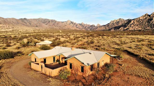 7989 E Horse Ranch Road, St. David, AZ 85630 (MLS #22029750) :: My Home Group