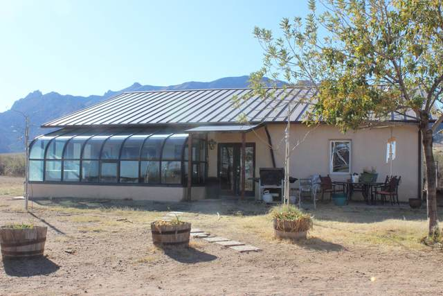 955 N Slope Along Way, Cochise, AZ 85606 (MLS #22029816) :: My Home Group