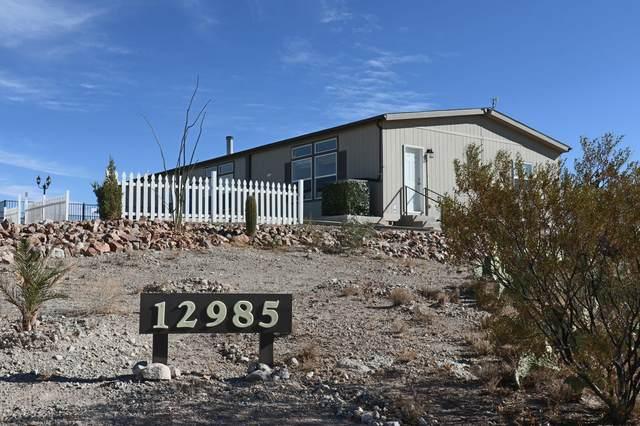 12985 S Twin Star Drive, Vail, AZ 85641 (#22029889) :: Gateway Realty International