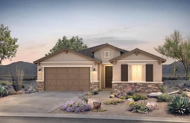 8437 N Van Cleeve Lane N, Tucson, AZ 85743 (#22029942) :: Long Realty - The Vallee Gold Team