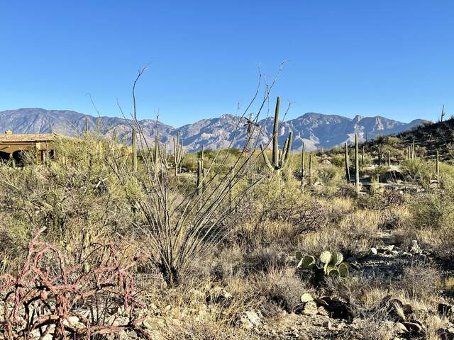14554 N Granite Peak Place #275, Oro Valley, AZ 85755 (MLS #22029989) :: The Property Partners at eXp Realty