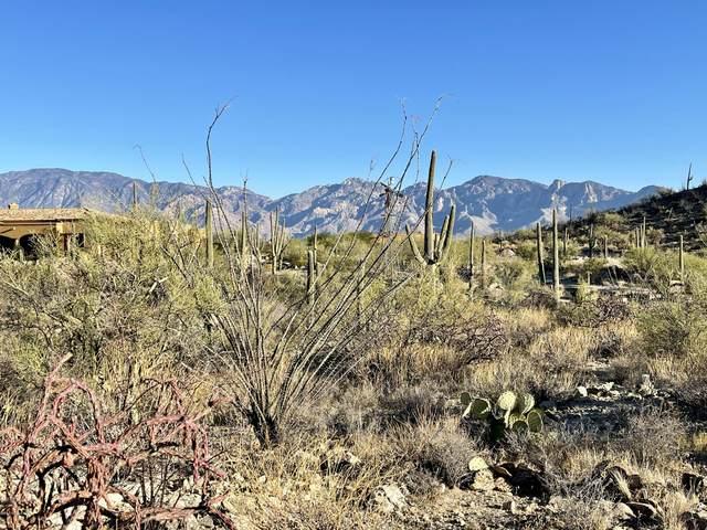 14554 N Granite Peak Place #275, Oro Valley, AZ 85755 (#22029989) :: Gateway Realty International