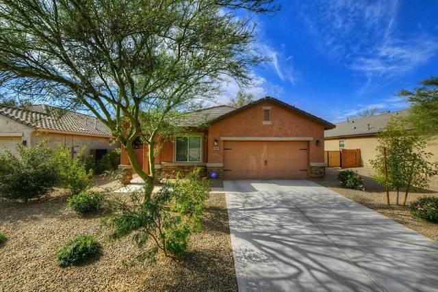 12887 N Honey Bell Drive, Marana, AZ 85653 (MLS #22030013) :: The Property Partners at eXp Realty