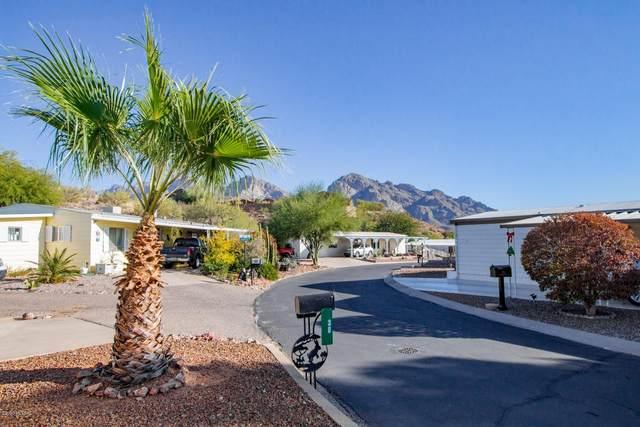 38 W Appalachian Street, Tucson, AZ 85737 (MLS #22030069) :: The Property Partners at eXp Realty