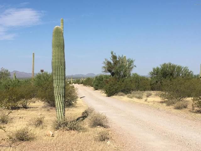 1650 N Sandario Road, Tucson, AZ 85743 (#22030076) :: Gateway Realty International