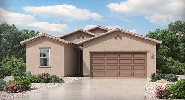 3350 W Sunlit Peak Drive, Tucson, AZ 85742 (MLS #22030078) :: The Property Partners at eXp Realty