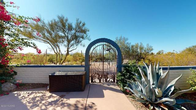 5646 N Genematas Drive, Tucson, AZ 85704 (MLS #22030079) :: The Property Partners at eXp Realty