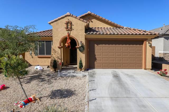 12001 N Raphael Way, Tucson, AZ 85742 (MLS #22030160) :: The Property Partners at eXp Realty