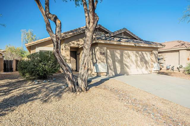 13277 N Lost Artifact Lane, Oro Valley, AZ 85755 (MLS #22030164) :: The Property Partners at eXp Realty