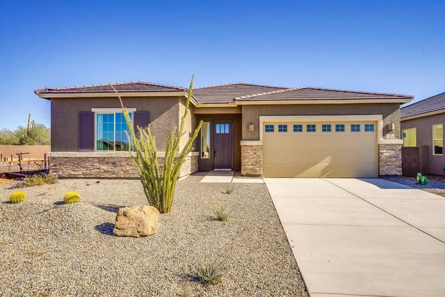 8028 N Purple Aster Place, Tucson, AZ 85741 (MLS #22030176) :: The Property Partners at eXp Realty