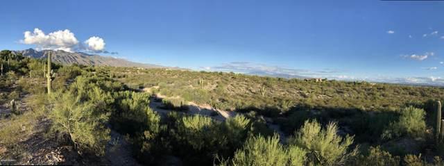 4409 N Country Club Road #258, Tucson, AZ 85718 (#22030210) :: The Josh Berkley Team