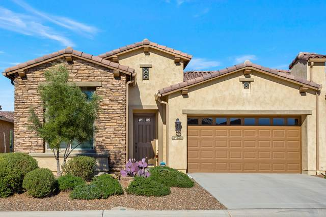 61140 E Flint Drive, Oracle, AZ 85623 (MLS #22030234) :: The Property Partners at eXp Realty