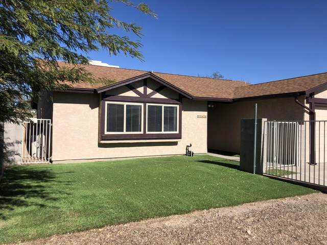3624 W Butterfly Lane, Tucson, AZ 85742 (MLS #22030235) :: The Property Partners at eXp Realty