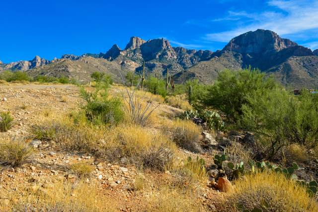 10625 N Del Sole Court Lot 77, Oro Valley, AZ 85737 (#22030752) :: Long Realty Company