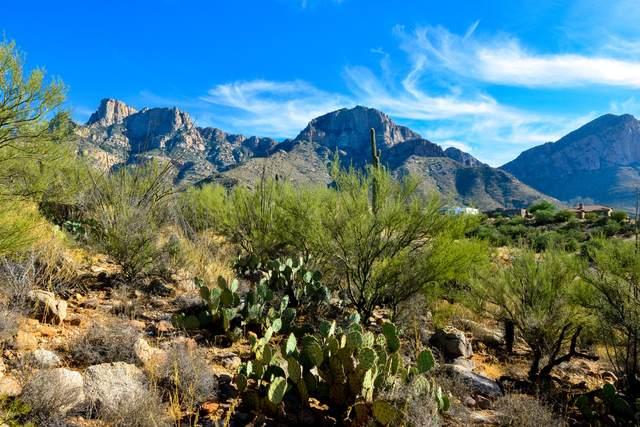 10635 N Del Sole Court N #76, Tucson, AZ 85737 (#22030754) :: Gateway Realty International