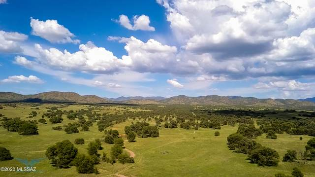 TBD Forest Road 4745 -, Patagonia, AZ 85624 (#22031238) :: Long Realty - The Vallee Gold Team
