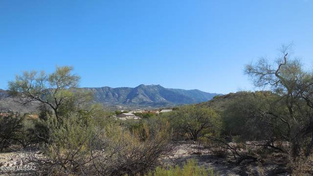 014k 30550014K, Catalina, AZ 85739 (#22031456) :: Long Realty Company