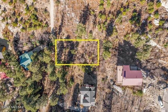 12756 N Ray Avenue N #23, Mt. Lemmon, AZ 85619 (#22100135) :: The Local Real Estate Group | Realty Executives
