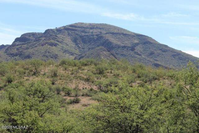 TBD Salero Ranch #91, Tubac, AZ 85646 (#22100624) :: Long Realty - The Vallee Gold Team
